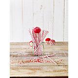 Lolli-Sticks rot gepunktet, 48 Stück