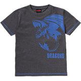 DRAGONS T-Shirt für Jungen