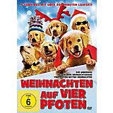 DVD Weihnachten auf vier Pfoten