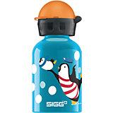 SIGG Trinkflasche Polar Family, 0,3 l
