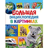 Большая энциклопедия в картинках