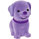 Фиолетовый щенок, Little Live Pets