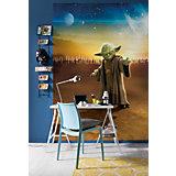 Fototapete Star Wars, das Erwachen der Macht, Master Yoda, 184 x 254 cm