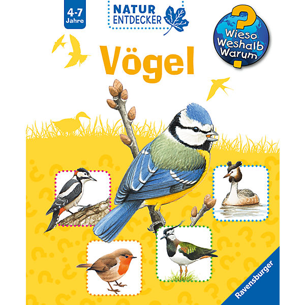 WWW Naturentdecker Vögel