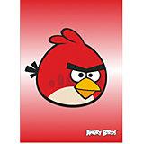 Папка формат А4, Angry birds, в ассортименте