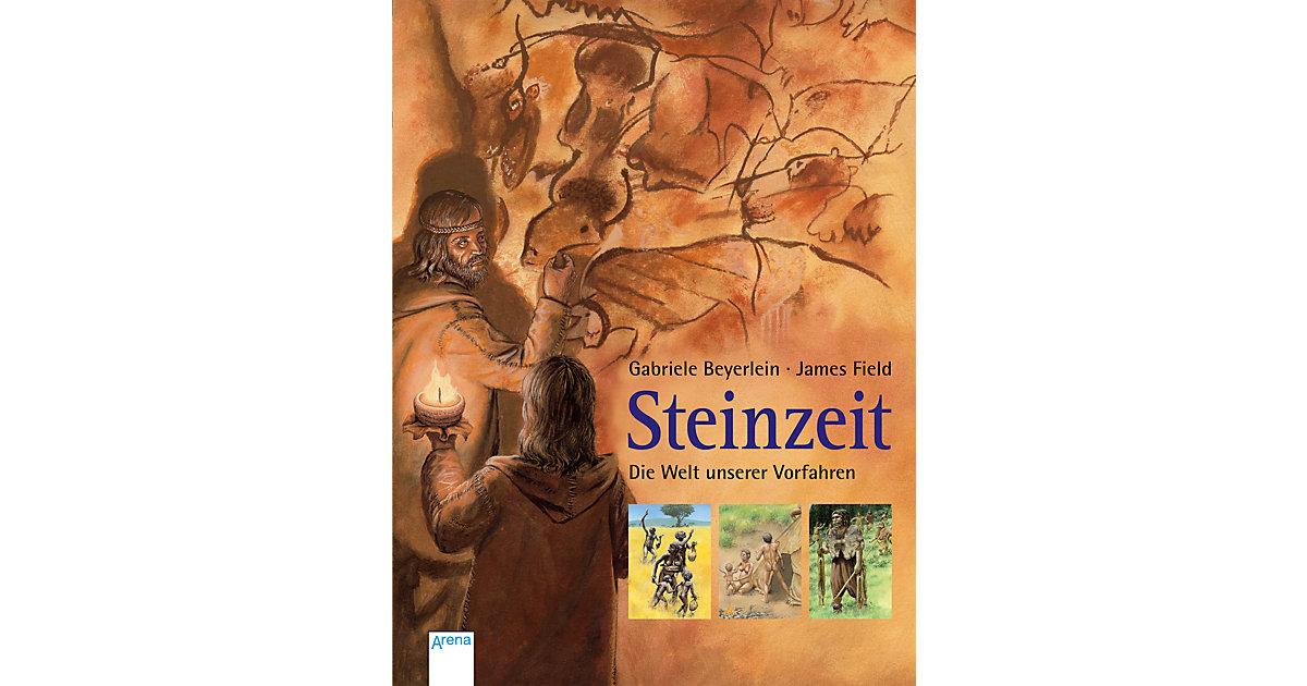 Buch - Steinzeit - Die Welt unserer Vorfahren