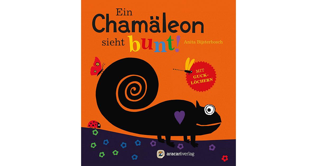Buch - Ein Chamäleon sieht bunt!