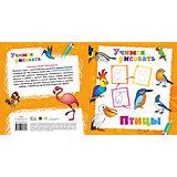 """Книга """"Птицы"""" Учимся рисовать"""