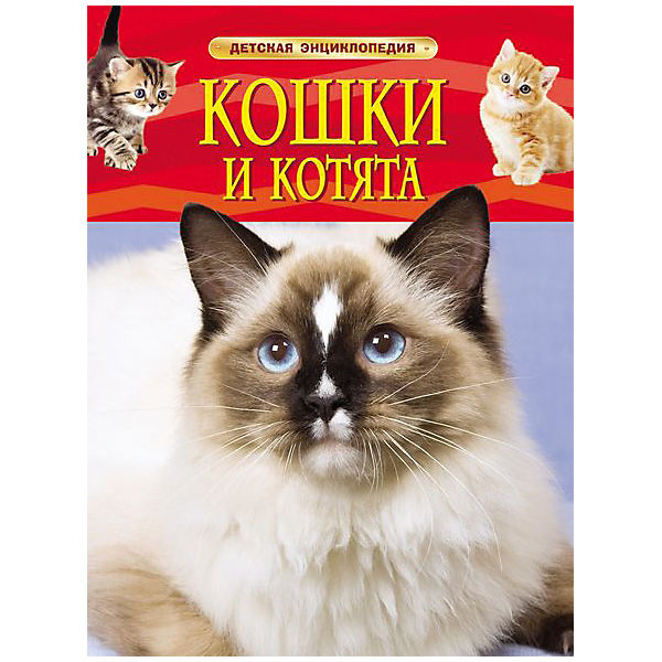 """Детская энциклопедия """"Кошки и котята"""""""