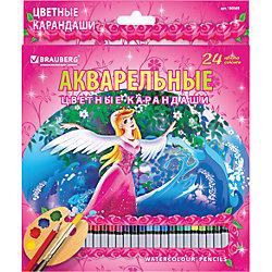 """Цветные карандаши акварельные """"Rose Angel"""", 24 цв., Brauberg"""