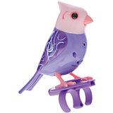Поющая птичка с кольцом, сиреневая, DigiBirds
