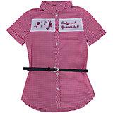 Блузка для девочки PELICAN
