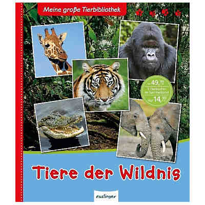 Wunderbare Welt Der Tiere Valerie Davies Mytoys border=