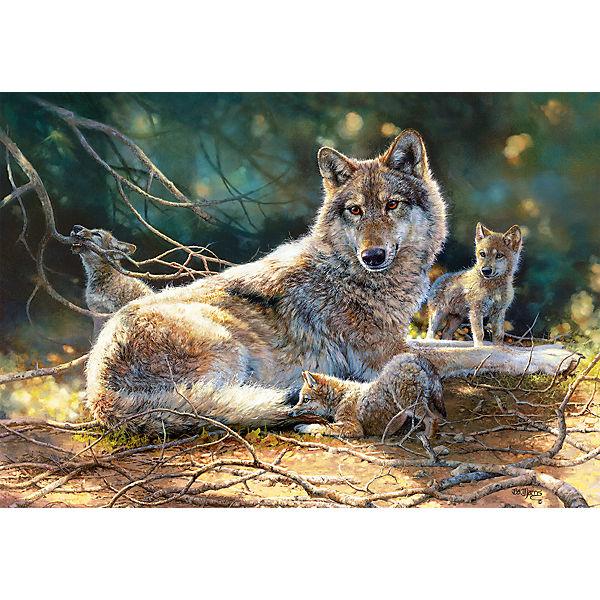 """Пазл """"Волки"""", 1500 деталей, Castorland"""