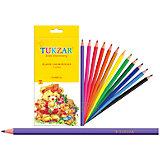 Набор цветных карандашей в пластиковом корпусе, 12 цв.