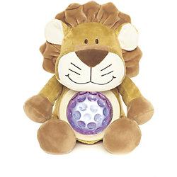 ������ ���, ���������, Teddykompaniet