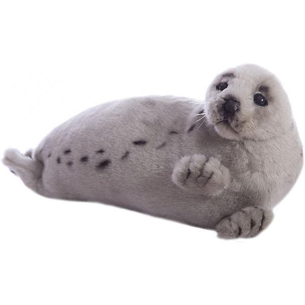 Гренландский тюлень, 38 см