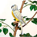 Попугай волнистый голубой, 15 см