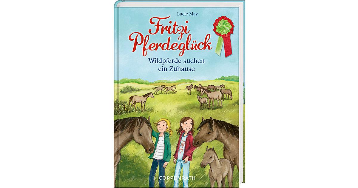 Buch - Fritzi Pferdeglück: Wildpferde suchen ein Zuhause