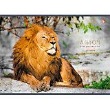 """Альбом для рисования """"Царственный лев"""", 40л"""