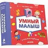 """9 книжек-кубиков """"Умный малыш, Мои первые слова"""""""