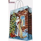 """Подарочный пакет """"Дед Мороз со списком"""" 17,8*22,9*9,8 см"""