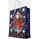 """Подарочный пакет """"Дед Мороз в красном кафтане"""" 17,8*22,9*9,8 см"""