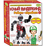 """Французские опыты """"Робот-акробат"""""""