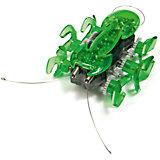 """Микро-робот """"Муравей"""", зеленый, Hexbug"""