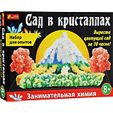"Набор для творчества ""Сад в кристаллах"""