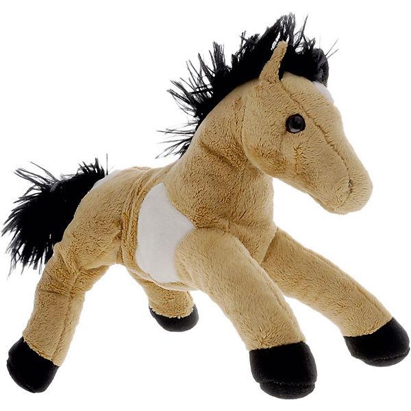 Пятнистая лошадь, Fancy