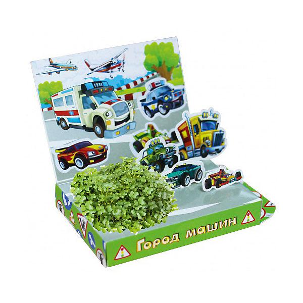 """Набор для выращивания """"Живая открытка"""" - Город машин Happy Plant"""