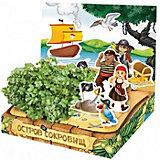 """Набор для выращивания """"Живая открытка"""" - Остров сокровищ Happy Plant"""