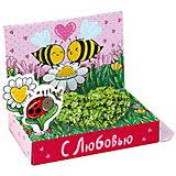 """Набор для выращивания """"Поздравляю"""" - Пчелки Happy Plant"""