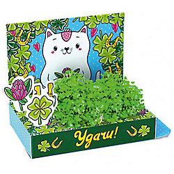 """Набор для выращивания """"Живая открытка"""" - Удачи! Кот, Happy Plant"""