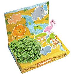 """Набор для выращивания """"Сафари"""", Happy Plant"""