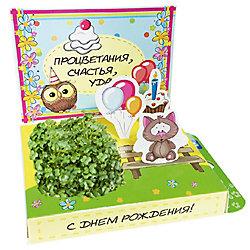 """Набор для выращивания """"С Днем Рождения!"""" - Котик, Happy Plant"""
