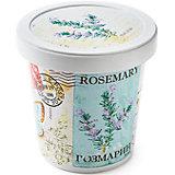 """Набор для выращивания """"Розмарин"""" Rostok Visa"""
