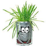 """Набор для выращивания """"Сафари"""" - Слон Happy Plant"""