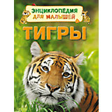 "Энциклопедия для малышей ""Тигры"""