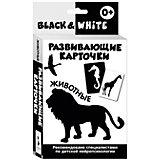"""Развивающие карточки """"Black & White. Животные"""""""