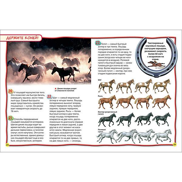 Лошади и пони (100 фактов)