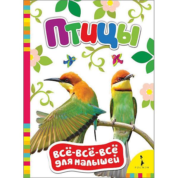 Птицы, Все-все-все для малышей