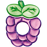 Прорезыватель водный охлаждающий Ягодка 0+ Fruits, Canpol Babies, фиолетовый