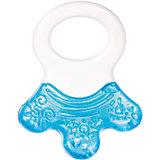Прорезыватель водный с погремушкой - Лапка, 0+, Canpol Babies, голубой