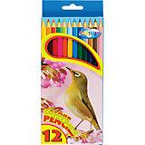 Длинные цветные карандаши, 12 цветов