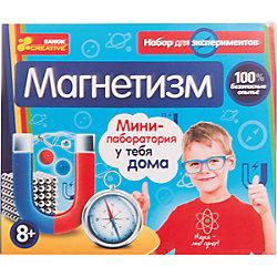 "Научные игры, ""Магнетизм (Н)"