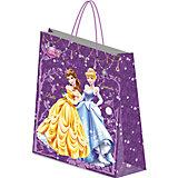 Пакет подарочный, Принцессы Дисней