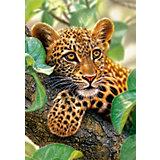 "Пазл ""Ягуар на дереве"", 1500 деталей, Castorland"
