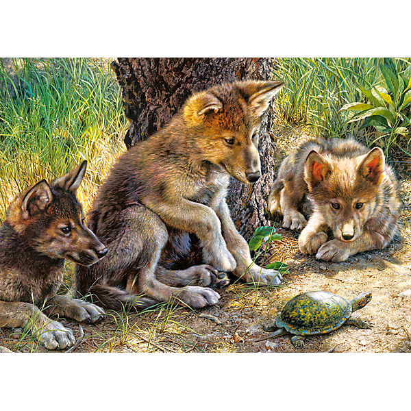 """Пазл """"Волчата с черепахой"""", 260 деталей, Castorland"""